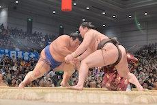 incontri di sumo in giappone