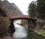 Tour di Nikko di una giornata in italiano