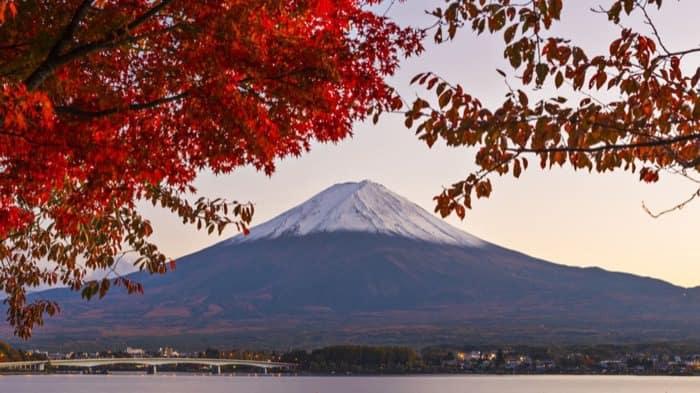 Tour per il Monte Fuji