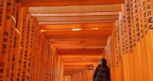 farah presso il fushimi inari